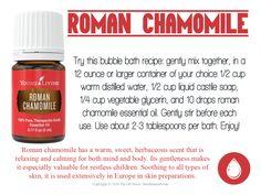 romanchamomile_loveitshareit