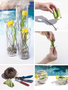 How To Make Amazing Home Design With Tulips