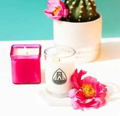 @bridgeninecandles summer collection 🎉☀️ dropped yesterday and I am just dying to get my hands on some of her beautiful candles! And these shots that @2twenty2creative took are 🔥🔥🔥 Our marble hexagon coasters have never looked so good! They sure do make a perfect candle coaster! Modern Coasters, Beautiful Candles, Summer Collection, Glass Of Milk, Shot Glass, Candle Holders, Marble, Shots, Hands