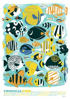 Tropical Fish - A3 Lithographic Print. £10.00, via Etsy.