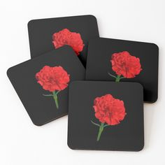 Framed Prints, Canvas Prints, Art Prints, Red Carnation, Carnations, Glossier Stickers, Coasters, Finding Yourself, Classic T Shirts