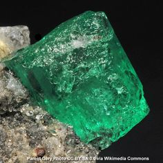 "Emerald [N] [S] Heb. nophek ( Exodus 28:18 ; 39:11 ); i.e., the ""glowing stone"", probably the carbuncle, a precious stone in the breastplate of the high priest. It is mentioned ( Revelation 21:19 ) as one of the foundations of the New Jerusalem. The name given to this stone in the New Testament Greek is smaragdos, which means ""live coal.""  http://www.biblestudytools.com/dictionary/emerald/  Emerald Crystal Photo by Parent Gery CC BY SA 3.0 via Wikimedia Commons"