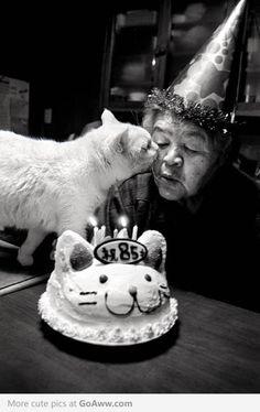 9 year old cat celebrating birthday with 85 year old grandma - goaww.com