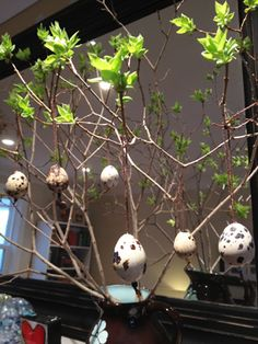 Check out this cute Easter Tree tutorial from @andrea tomkins. It's decorated with quail eggs!