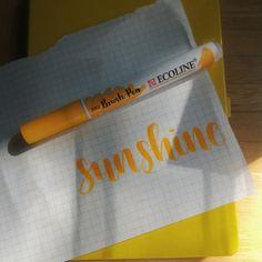 Another Hufflepuff Aesthetic Blog : Photo