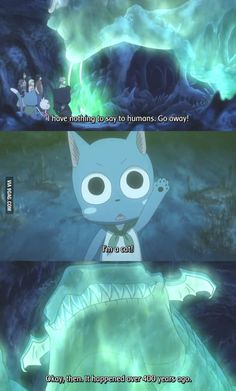 Exceeds/cats are the best part of Fairy Tail along with NALU! Anime Meme, Got Anime, I Love Anime, Anime Art, Fairy Tail Meme, Anime Fairy Tail, Fairy Tail Happy, Fairytail, Gruvia