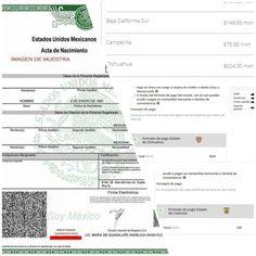 Chihuahua, el estado que cobra más caro por tramitar un acta de nacimiento vía online; 3120% más que el costo en Coahuila | El Puntero