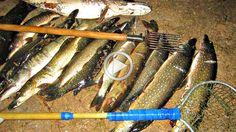 Рыбалка острогой в проруби Жесть Fishing Videos Рыба неожидала такого См...