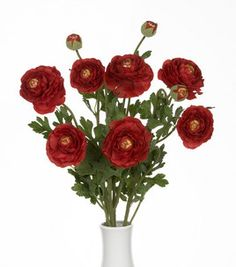 19'' Ranunculus Bush with 7 Flower and 3 Buds- Red