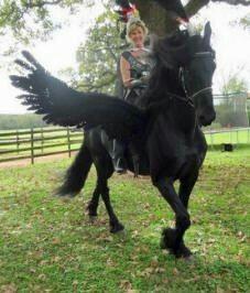 Horse Halloween costume
