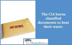 CIA   BrainyFacts.net