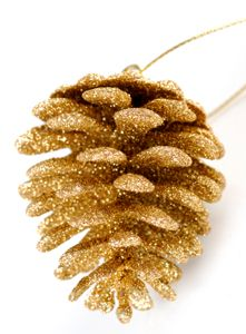 so much fun to make these. Make glitter pine cone decorations.