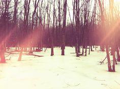 Ice lake backyard