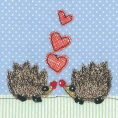 Designing unique and colourful cards. Hedgehogs, Color Card, Daisy, Card Making, Unique, How To Make, Cards, Beautiful, Design