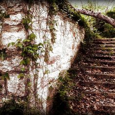 """""""Eureka Stairs"""" by Charlie Bookout - 2011 / digital photography  You find strange trails and alley ways in Eureka Springs, Arkansas that are never there when you look for them again."""