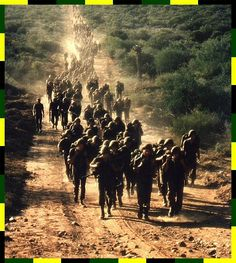 SADF.info Military Life, Military History, Troops, Soldiers, Brothers In Arms, Defence Force, My Land, Korean War, Iron Fist