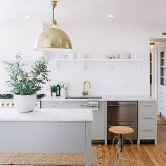 White and Grey Kitchen with God Accents, Transitional, Kitchen