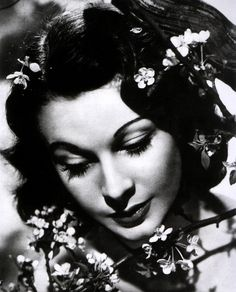 Vivien Leigh / Films / Gone With the Wind Scarlett O'hara, Vivien Leigh, Darjeeling, Old Hollywood Glamour, Hollywood Stars, Classic Hollywood, Vintage Hollywood, Classic Beauty, Timeless Beauty