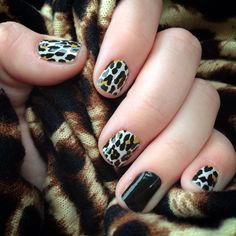 Jelmo.JamberryNails.net -- Jamberry Natural Leopard and Darkest Black