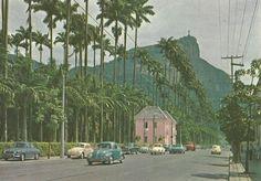 Jardim Botânico -- Década de 60.