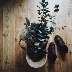 Eucalyptus and foliage in a basket with boots kicked off