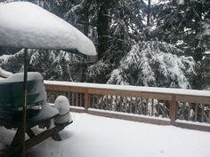 Snow on the back deck. Beautiful!
