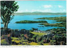 For St. Patrick's Day: Bantry Bay, showing Garinish Island, Glengarriff, Co. Cork, Ireland.
