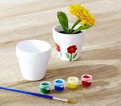 Paint A Flower Pot Kit
