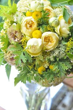 Fresh Flowers, Yellow Flowers, Beautiful Web Design, Flower Arrangements, Floral Wreath, Bouquet, Wreaths, Table Decorations, Plants