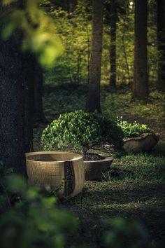 HOLZ GEFÄSSE Aus einem Stamm, von Hand gefertigt. Oberfläche, Fertigung und Masse ganz nach Ihrem Wunsch. Holz – Natur Pur! Outdoor Furniture, Outdoor Decor, Exterior Design, Park, Patio, Wish, Timber Wood, Lawn And Garden, Home Exterior Design