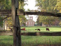 Virginia plantation