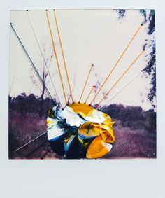 Elsa K. Gaertner: Overpainted Photograph - Light, air and water