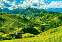 Planning a trip to Vietnam but still unsure? Here are a few reasons why not to visit Vietnam that will hopefully change your mind. Traveling Vietnam is. Vietnam Holidays, Bali Holidays, Visit Vietnam, North Vietnam, Best Places To Travel, Cool Places To Visit, Lonely Planet, Photo Vietnam, Trekking