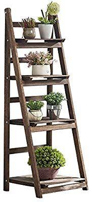 Amazon Com Rhf Foldable Ladder Shelf Plant Stand Indoor Flower Pot Stand Flower Pot Ladder Fr In 2020 Plant Stand Indoor Plant Stand