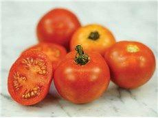 Thessaloniki Tomato 2