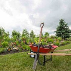 Country Lore: Landscaping on a Budget