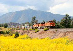 BNSF eastbound intermodal freight train taken east of Flagstaff,AZ with Mt. Elden in the background.