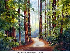 Big Basin Redwoods 22x30 - Marie Gabrielle, watercolor