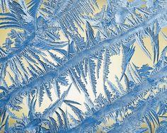 макро, вода, красота, зима, красиво, мороз, лёд, узор, красота природы, узоры на стекле