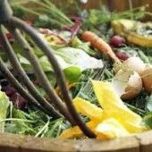 Composting is the single most important practice of organic gardening. Converting yard and kitchen waste into soil nourishing compost benefits your lawn and garden as well as the environment.