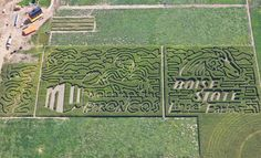 Go Big Blue! Boise State University Broncos are a-MAZE-ing!