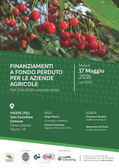 Vieste, convegno sui finanziamenti a fondo perduto per il comparto agricolo - http://blog.rodigarganico.info/2016/gargano/vieste-convegno-sui-finanziamenti-fondo-perduto-comparto-agricolo/