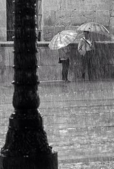 Rain By Veselin Malinov