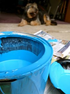How-To Make Your Paint Cans Non-Drippy. Check out blog on DiggersList.com.