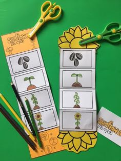 Sunflower Life Cycle Craft By Gwyn September 2017 // No commentsSunflower Life Cycle Craft Science For Kids, Science Activities, Art For Kids, Activities For Kids, Sequencing Activities, Kindergarten Science, Plant Crafts, Plant Projects, Preschool Printables