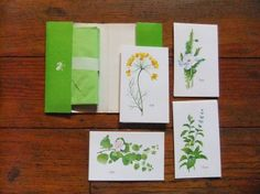 Vintage Herb and Spice Note Cards Stationery Full by Isisgoodsny