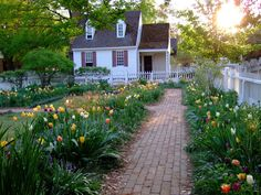 cute cottage and tulip gardens