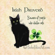Crazy Cat Lady, Crazy Cats, I Love Cats, Cute Cats, Irish Proverbs, Black Cat Art, Black Cats, St. Patricks Day, Printed Magnets