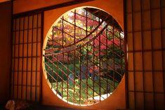 京都の紅葉景勝地「東福寺」の穴場紅葉スポット!「光明院」で美しい庭と紅葉のコラボを堪能 | 京都府 | [たびねす] by Travel.jp