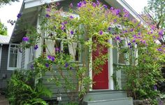 Cottage vacation rental in Venice Beach from VRBO.com! #vacation #rental #travel #vrbo